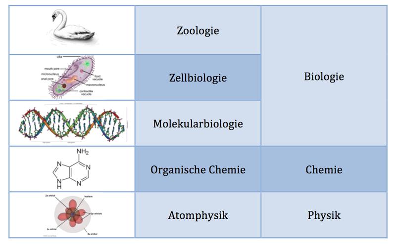 Naturwissenschaften als Schichtenmodell